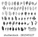 hand drawn vintage leaves.... | Shutterstock .eps vector #281545127