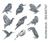 ink hand drawn bird set | Shutterstock .eps vector #281565767