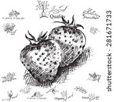 strawberry. hand drawing  ... | Shutterstock .eps vector #281671733
