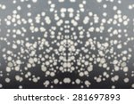 defocused and blur black and... | Shutterstock . vector #281697893