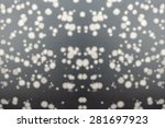 defocused and blur black and... | Shutterstock . vector #281697923