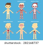 """my body""  educational anatomy... 