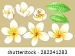 handmade color pencils drawing... | Shutterstock .eps vector #282241283