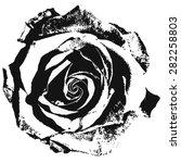 black silhouette of rose.... | Shutterstock .eps vector #282258803