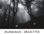 mysterious magical lights... | Shutterstock . vector #282317753