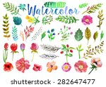vector watercolor hand drawn... | Shutterstock .eps vector #282647477