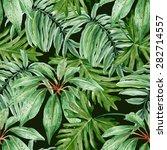 tropical leaves  dense jungle.... | Shutterstock .eps vector #282714557