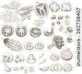 cut vegetables. hand drawn set... | Shutterstock .eps vector #282738407