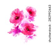 three flowering pink poppies.... | Shutterstock .eps vector #282992663
