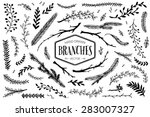Set Of Hand Drawn Branches. In...