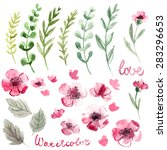 set of flowers painted in... | Shutterstock . vector #283296653