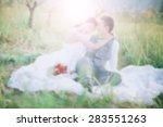 wedding background.blur... | Shutterstock . vector #283551263