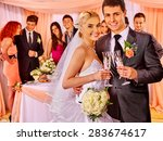 happy wedding couple drinking... | Shutterstock . vector #283674617