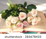 gentle roses with old books on... | Shutterstock . vector #283678433