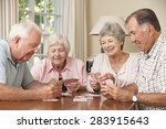group of senior couples... | Shutterstock . vector #283915643