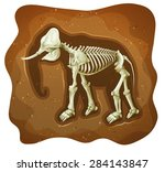 fossil of extinct animal under...