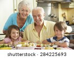 grandparents and grandchildren...   Shutterstock . vector #284225693