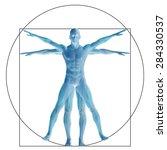 vitruvian human or man as a...   Shutterstock . vector #284330537