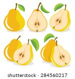 vector pears. whole and cut... | Shutterstock .eps vector #284560217