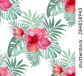 tropical background with red... | Shutterstock .eps vector #284818943