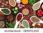 large spice and herb collection ... | Shutterstock . vector #285051203