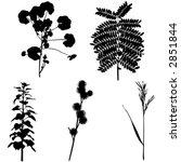 vector foliage set 2   Shutterstock .eps vector #2851844