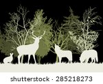 wild animals in the forest... | Shutterstock .eps vector #285218273