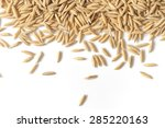 brown paddy rice closed up... | Shutterstock . vector #285220163