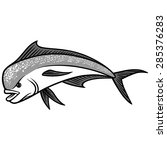 dolphin fish illustration