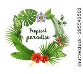 wreath made of tropical leaves... | Shutterstock .eps vector #285543503