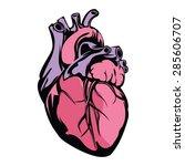 heart vector illustration | Shutterstock .eps vector #285606707