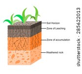 soil formation and soil... | Shutterstock .eps vector #285622013