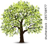 stylized tree | Shutterstock .eps vector #285738977