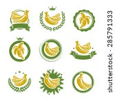 bananas labels and elements set.... | Shutterstock .eps vector #285791333