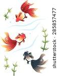 three goldfish swim  red ryukin ... | Shutterstock .eps vector #285857477