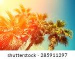 Retro Palm Trees Against Sky A...