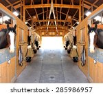 At The Stables  Selective Focu...