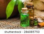 Stock photo tree oil green 286085753