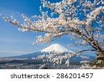 mountain fuji and cherry...   Shutterstock . vector #286201457