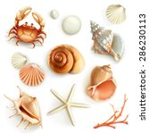 seashells  set vector icons | Shutterstock .eps vector #286230113
