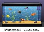 aquarium | Shutterstock .eps vector #286515857