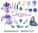 Set Of Different Blue  Lilac...