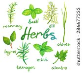 watercolor herbs set | Shutterstock .eps vector #286677233