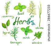 watercolor herbs set | Shutterstock .eps vector #286677233