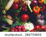 beautiful bright and fresh... | Shutterstock . vector #286754843
