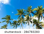 tropical palm trees in the blue ... | Shutterstock . vector #286783283