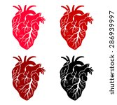 Set Of 4 Human's Heart  Red An...