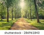 park landscape with a long alley | Shutterstock . vector #286961843