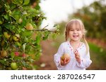 cute little girl picking apples ... | Shutterstock . vector #287026547