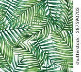 watercolor tropical palm leaves ... | Shutterstock .eps vector #287590703